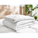 Couette anti-allergie 200x240